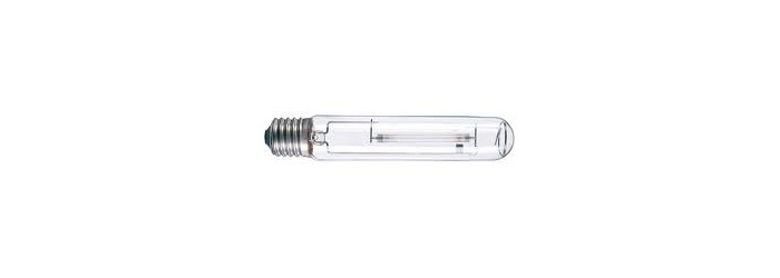 Ampoule HPS