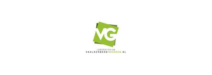 VG Phase